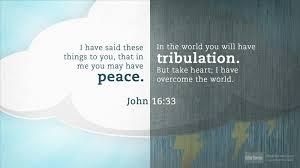 John 16.33
